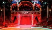 Roncalli Circus in Linz