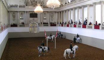 Spanish Riding School Vienna - Tribute to Vienna